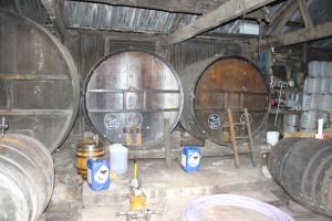 Burrow Hill Cider (2)