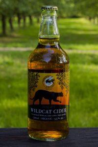 Dorset Nectar Wildcat - Medium Cider 5.5% - 12x500ml Bottles