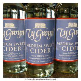 Ty Gwyn - Browns 5.0% 12 x 500ml bottles