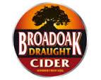 Broadoak Cider - Draught 6% 20 Litre Bag in Box