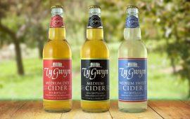 Ty Gwyn mixed case 12 x 500ml bottles